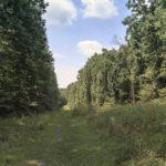 Blockhouse Point Conservation Park & Trails