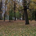 Brookdale Neighborhood Park