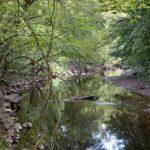 Rock Creek Potomac River tributary
