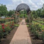 Bon Air Park Rose Garden