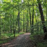 Rocky Run Stream Valley Trail